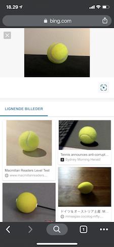 Bing visual search genkender objekt