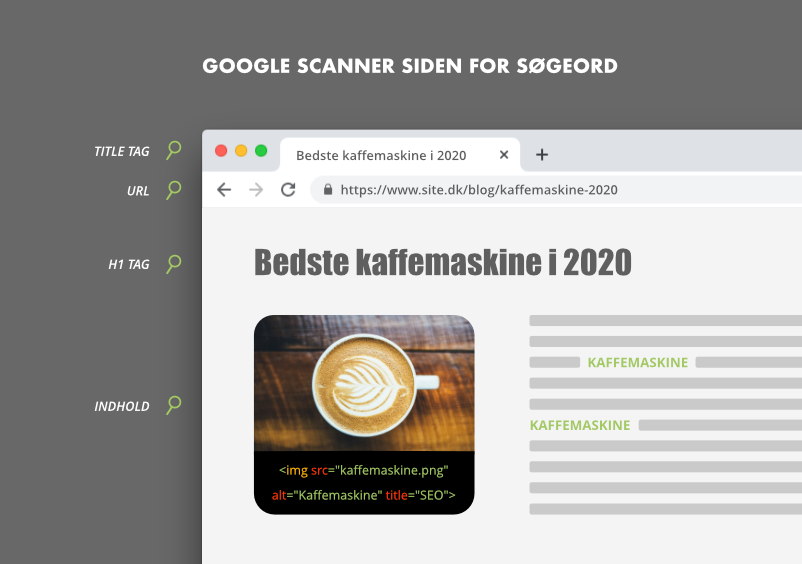 Google scanner websiden for søgeord