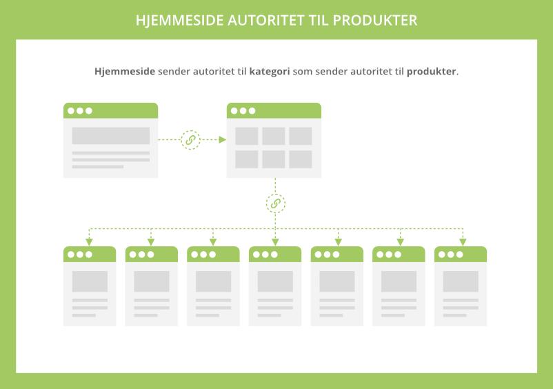Hjemmeside autoritet til produkter
